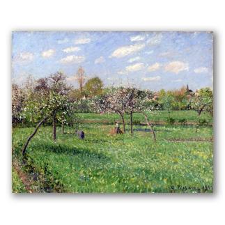 Primavera al Alba y Nublado